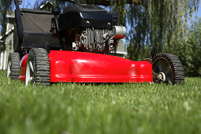 Annapolis-lawn-mowing