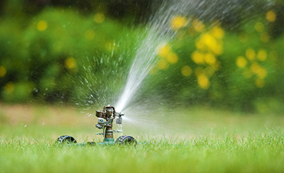 edgewaterlawnirrigation